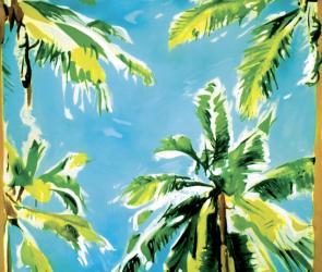 Die-Angst-vor-der-Kokosnuss-Manus-Hueller-Bild-artig