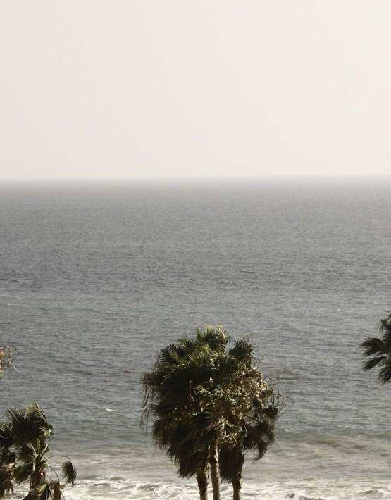 Colles Strandbild mit Palmen von Patrik Soetje