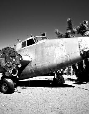 Flight-of-the-Phoenix-Jerome-Isma-ae-Bild-artig